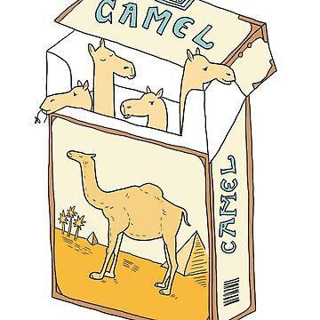 Camels! by mfarmand