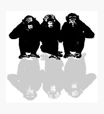3 Monkeys  Photographic Print