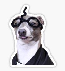 Kermit Potter Sticker