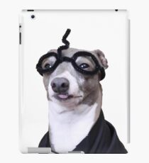 Kermit Potter iPad Case/Skin