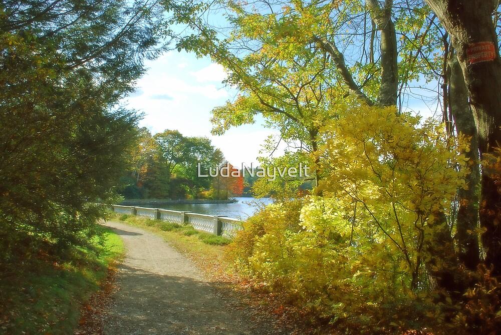 Fall road by LudaNayvelt
