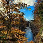 Autumnal High Force by Reg-K-Atkinson