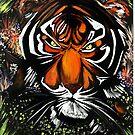 Tiger Stare by Adam Santana