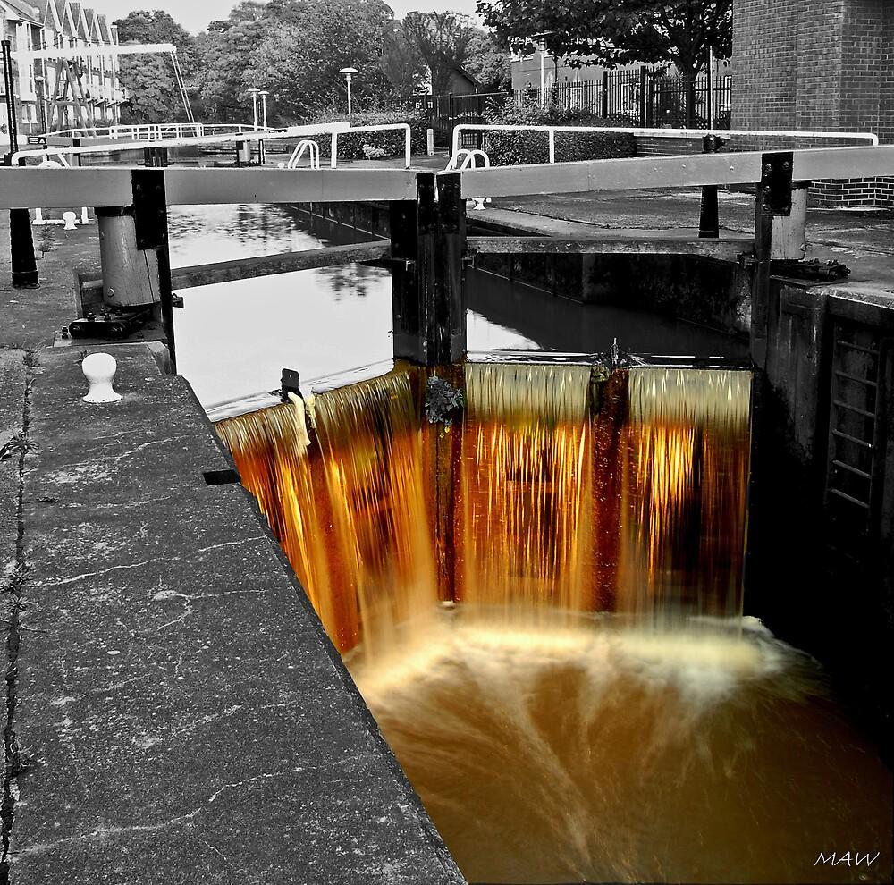Liquid Gold by MarkAWilliams