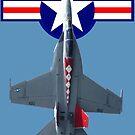 Retro Post WW2 USN Roundel F/A-18F Hornet 165894  by muz2142