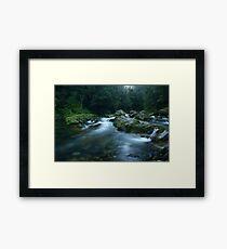 Williams River, Barrington Tops, NSW, Australia Framed Print