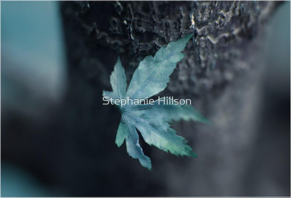 Winter Ice by Stephanie Hillson