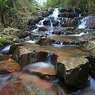 meyers creek falls.. by Donovan Wilson