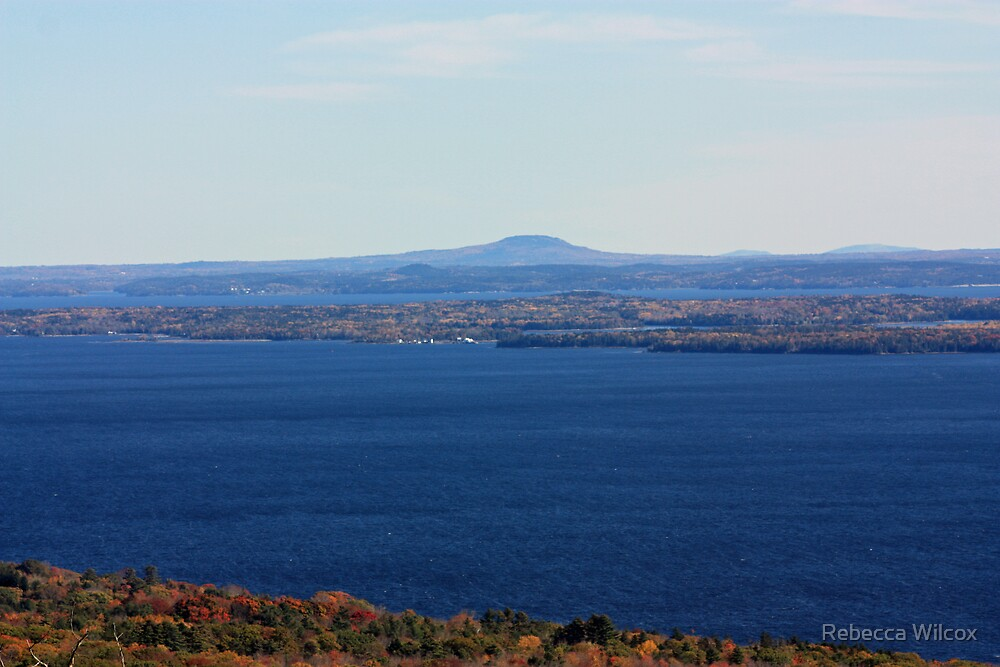 Maine Coast by Rebecca Brann