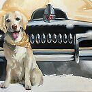 FERGUS AND HIS FJ (GOLD) feat. 1954 FJ Holden by RosaFedele