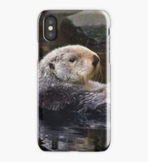 The Art of Relaxation iPhone Case/Skin