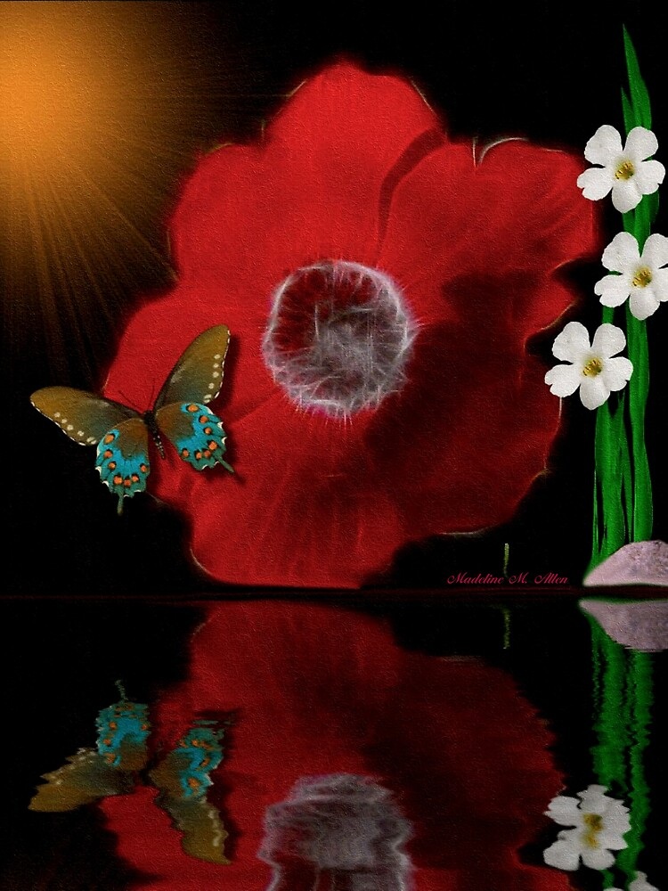 ~ ANEMONE REFLECTIONS ~ by Madeline M  Allen
