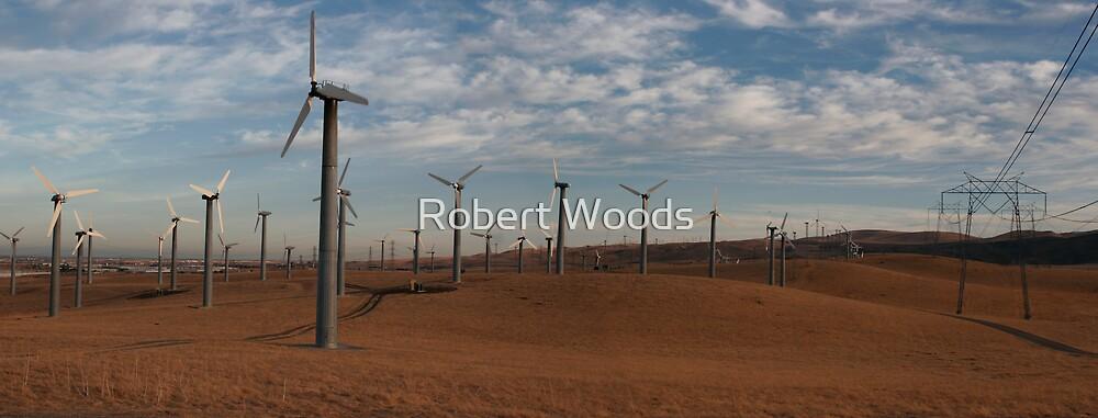 New Power by Robert Woods