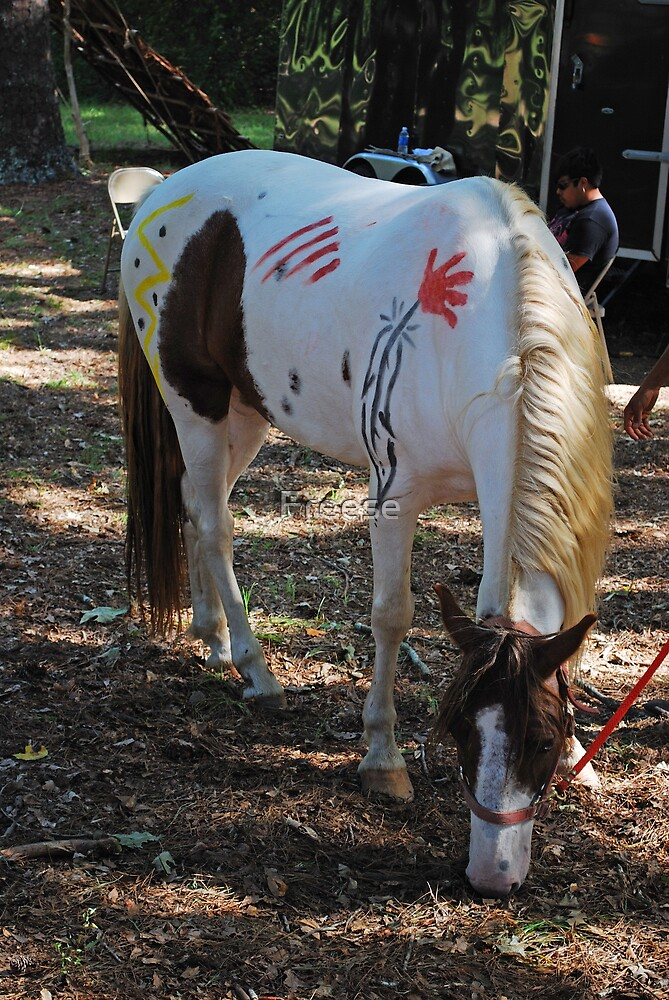 Painted Horse by Freese