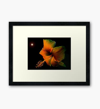 For the Queen Framed Print
