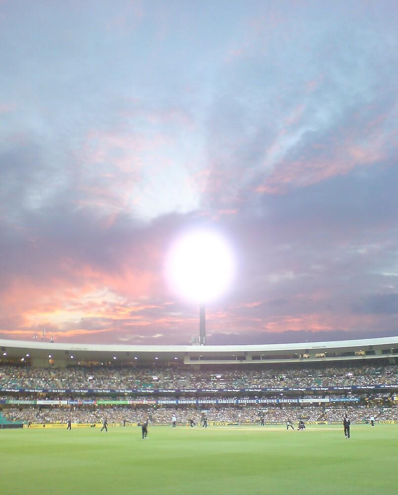 summer of cricket by Jafrankie