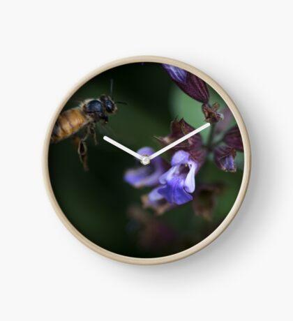 Sage and Honey Clock