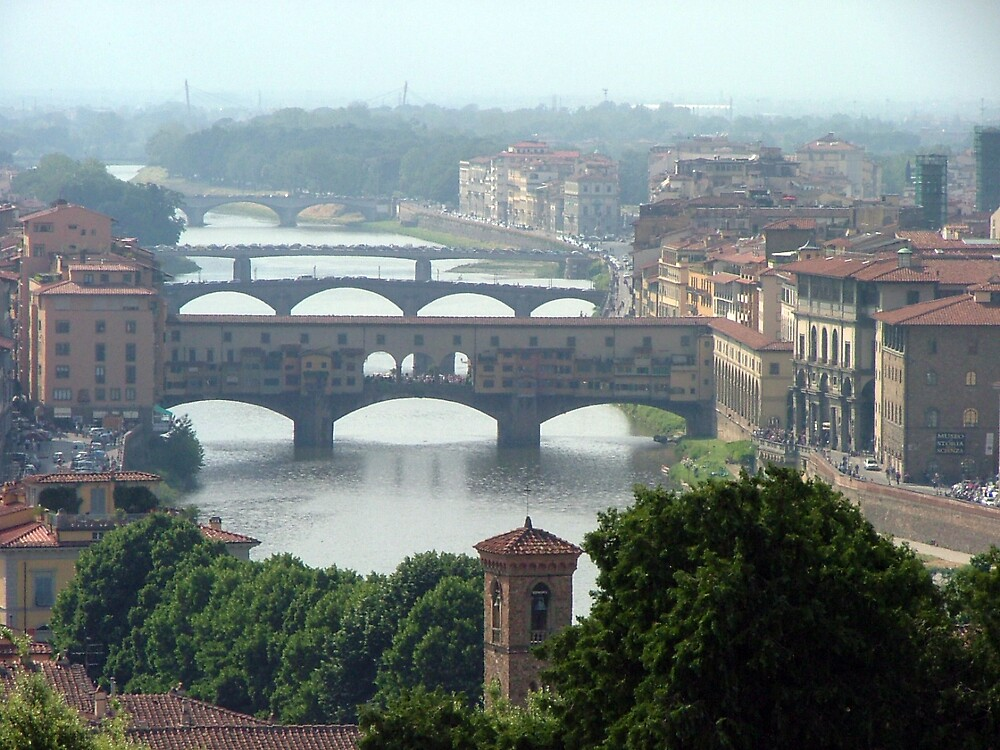 The Bridges o Florence by Twscats