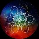 HEXA-TORUS SACRED INTERSTELLAR GEOMETRY - FOR INTELLIGENT, SCIENCE AND MYSTICISM DEVOTEES LIKE YOURSELF by Clifford Hayes