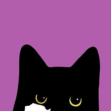 Tuxedo Cat Glare by blakechamberlai
