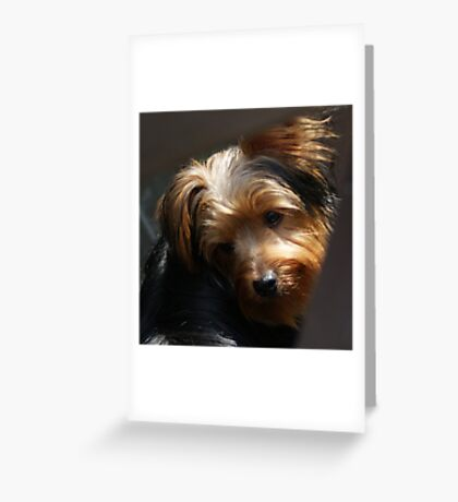 That Look Greeting Card