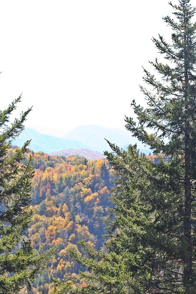 Smoky Mountain Fall by Lori Walton