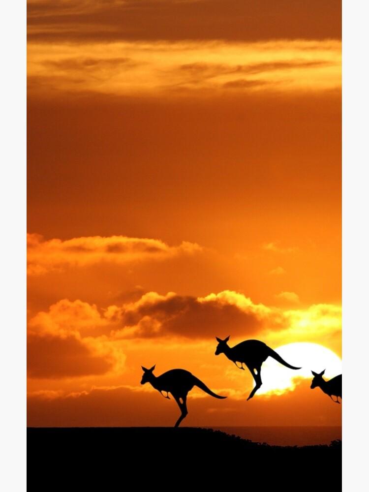 Australia by JohnDalkin