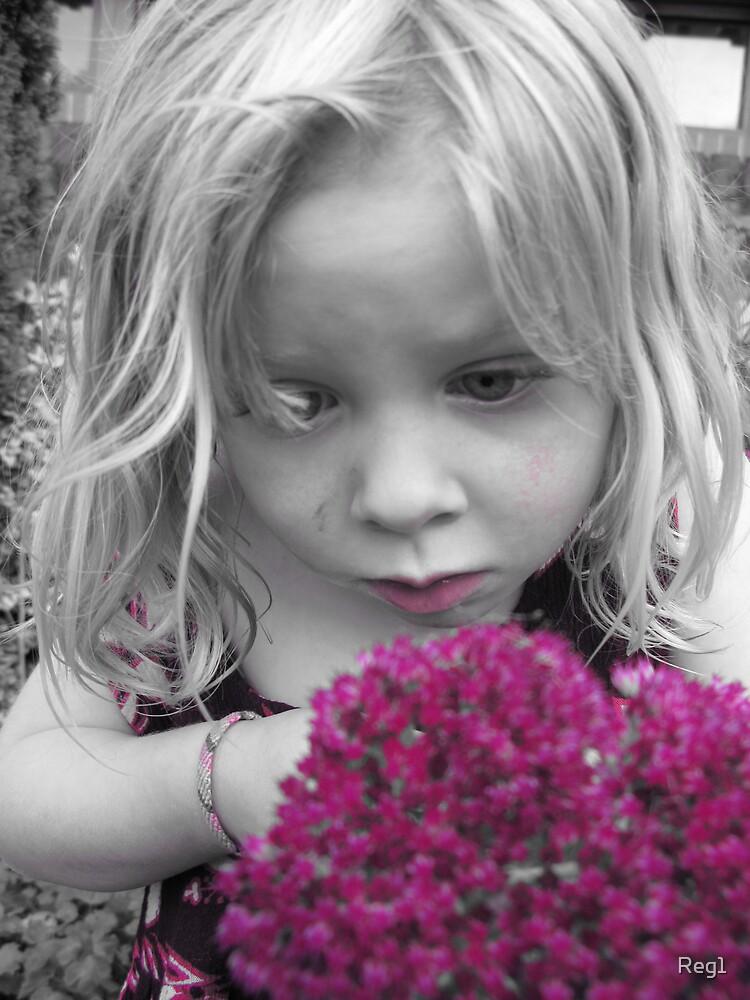 Purple Flower by Reg1