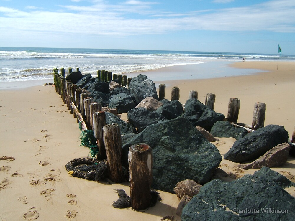 Beachy by Charlotte Wilkinson