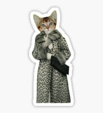 Kitten Dressed as Cat Sticker