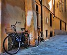 A Quiet Village Street - Lucca,  Italy by T.J. Martin