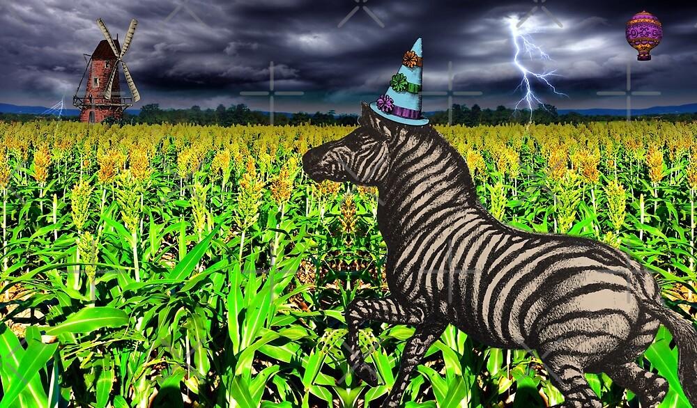 Sorghum Zebra by Judy Boyle