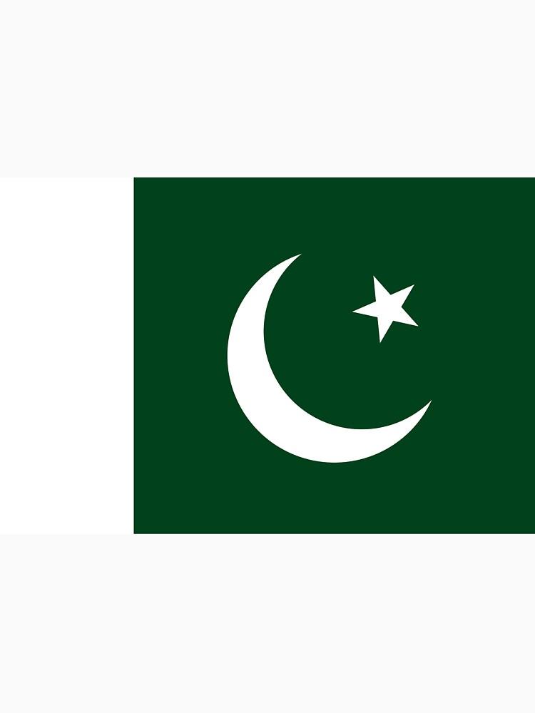 Pakistan Flag by zhirobas