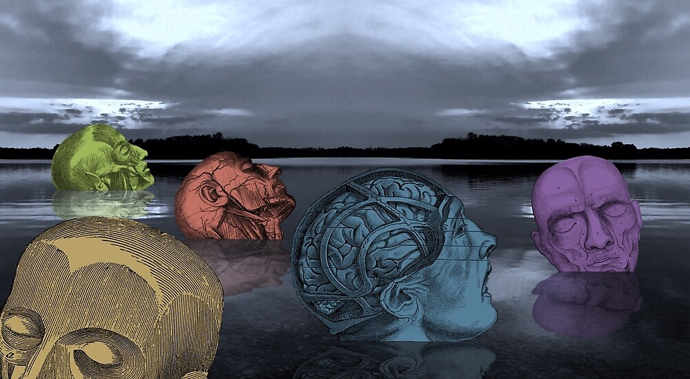 Five Heads in the Lake by Judy Boyle
