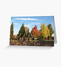 Fall Takes Over Greeting Card