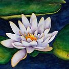 Water lilies, water colours, christmas gift, floral designs by chrissyturley