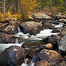 Glacier Creek by Gary Lengyel