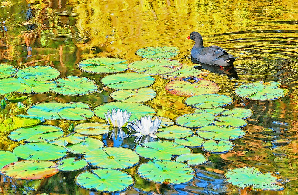Waterfowl [after Claude Monet] by George Petrovsky
