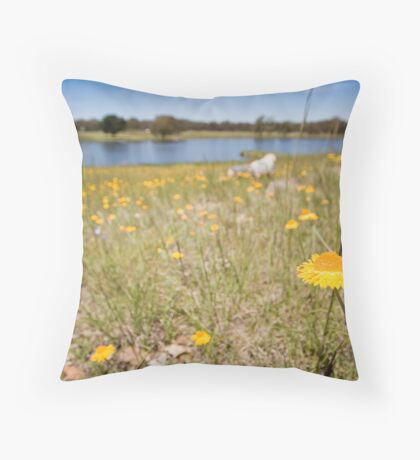 Relaxing by the Lake Throw Pillow