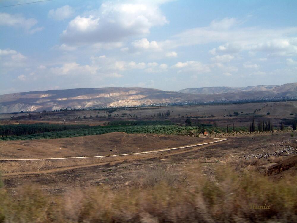 Ramat Ha Golan by Ilunia Felczer
