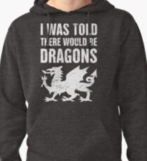 """""""I Was Told There Would Be Dragons"""" Renaissance Faire Design Pullover Hoodie"""