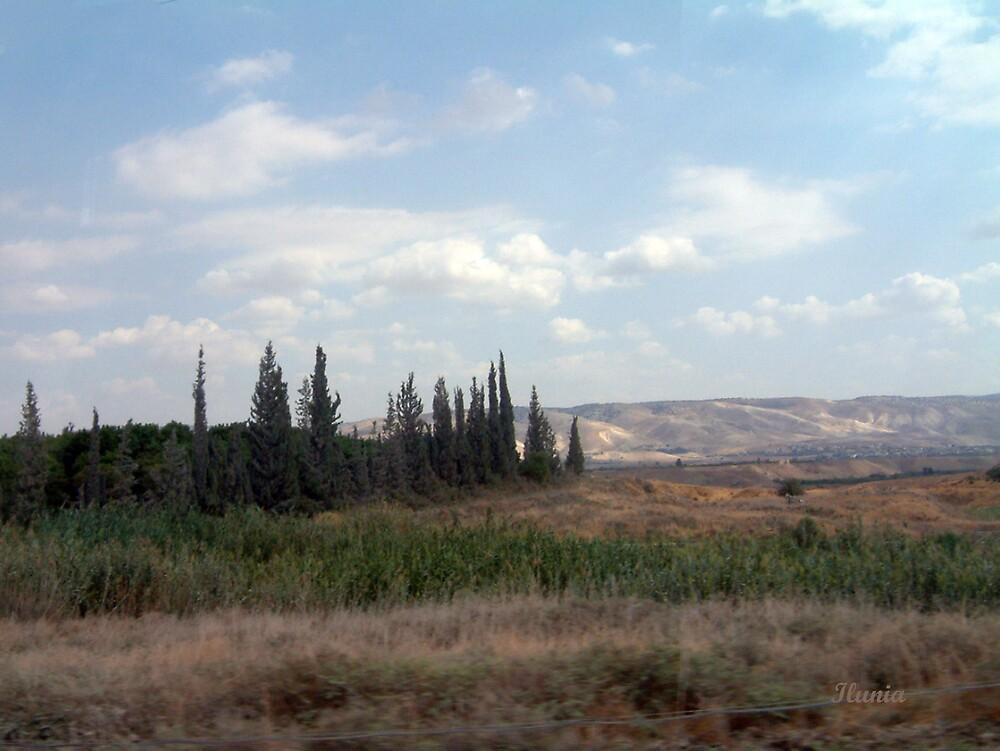 Ramat Ha Golan 1 by Ilunia Felczer