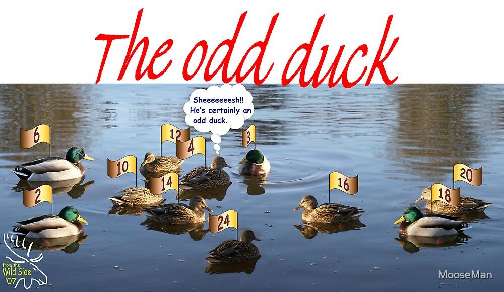 An Odd Duck by MooseMan