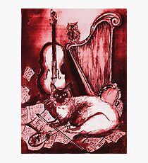 MUSICAL CAT AND OWL  Red White Photographic Print