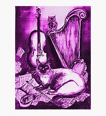 MUSICAL CAT AND OWL ,Purple Violet and White Photographic Print