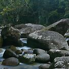 Mossman gorge by FASImages