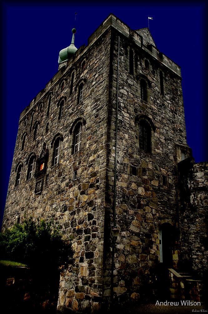 Bergen Tower by Andrew Wilson
