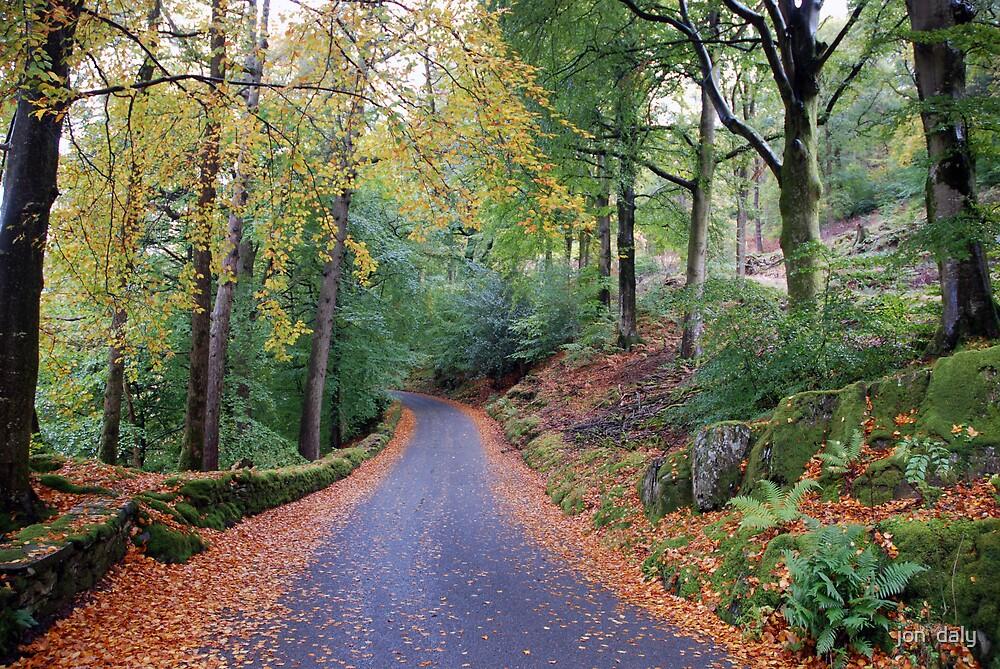 autumn lane by jon  daly