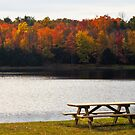 fall picnic view by marianne troia