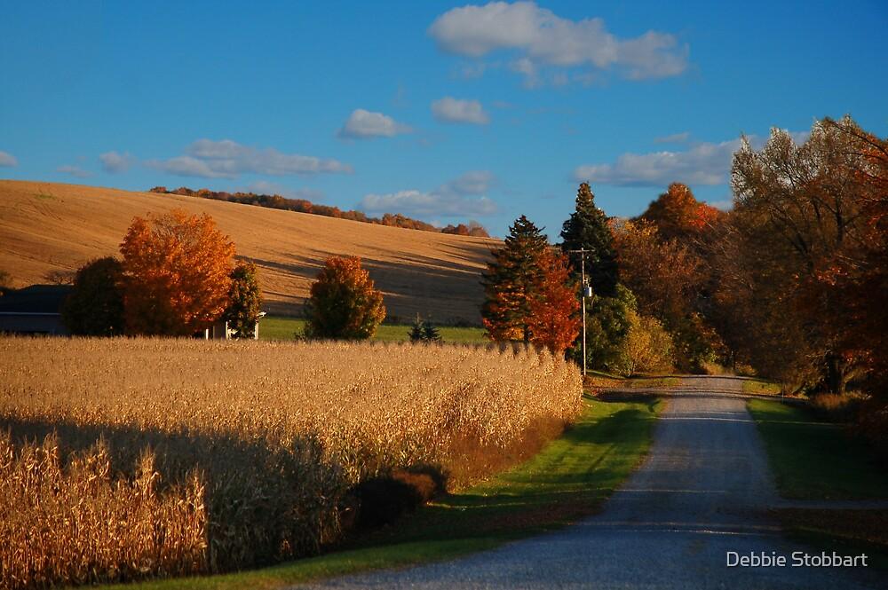 Autumn Fields by Debbie Stobbart